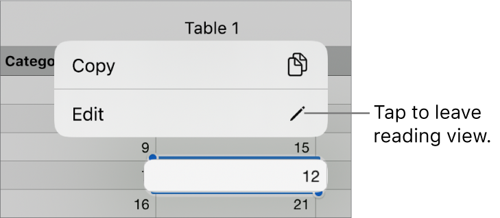 A table cell is selected, and above it is a menu with Copy and Edit buttons.