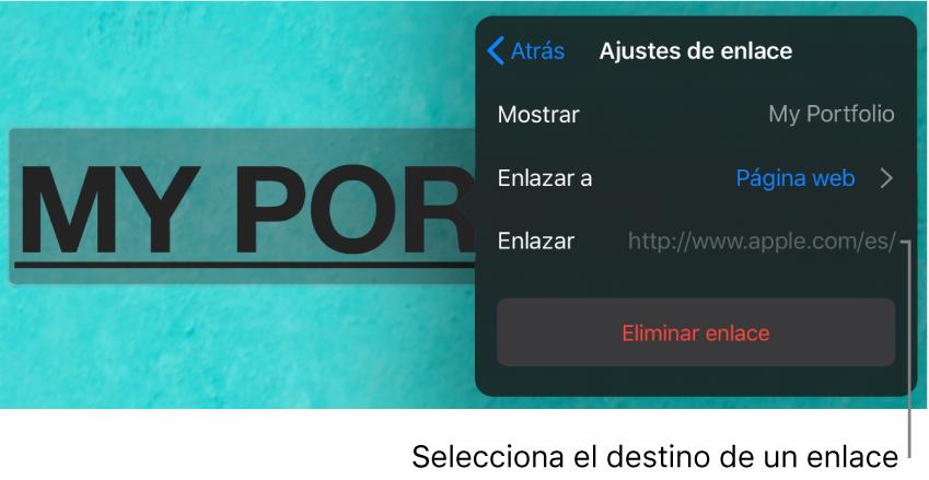 """Los controles de """"Ajustes de enlace"""" con un campo Mostrar, """"Enlazar a"""" (ajustado a """"Página web"""") y Enlace. El botón """"Eliminar enlace"""" aparece en la parte inferior."""