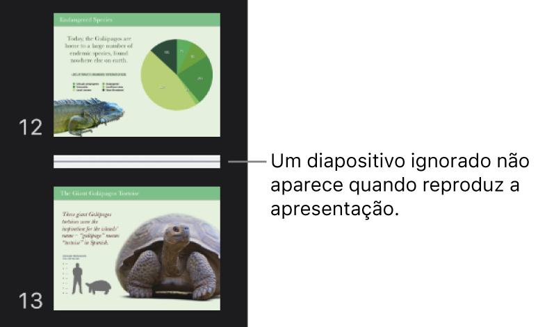 O navegador de diapositivos com um diapositivo ignorado visível como uma linha horizontal.