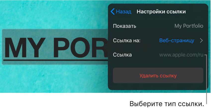 Элементы управления «Настройки ссылки» сполями «Показывать», «Ссылка на» (выбран вариант «Веб-страницу») и«Ссылка». Внизу находится кнопка «Удалить ссылку».