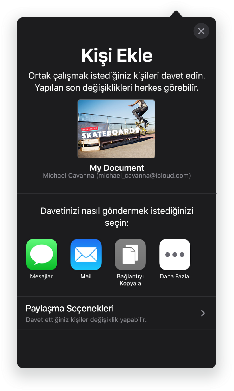 Kişi Ekle ekranı, paylaşılacak sununun bir resmini gösteriyor. Onun altında Mail, Bağlantıyı Kopyala ve Diğer de dahil olmak üzere çeşitli davet gönderme yolları için düğmeler var. En altta Paylaşma Seçenekleri düğmesi bulunuyor.