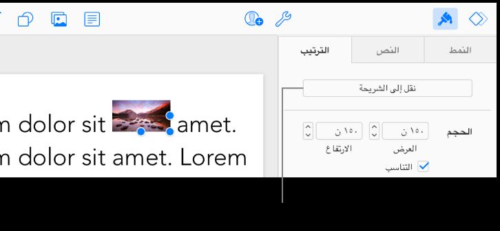 """يتم تحديد الصورة المضمنة داخل مربع النص، ويظهر الزر """"نقل إلى الشريحة"""" في علامة التبويب """"ترتيب"""" في الشريط الجانبي."""