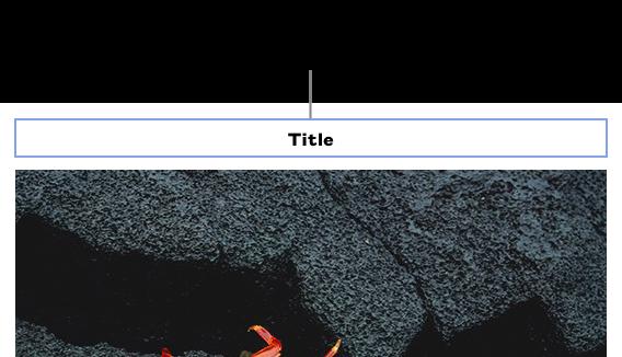 """يظهر عنوان العنصر النائب، """"العنوان"""" أعلى الصورة؛ يظهر التخطيط الأزرق حول حقل العنوان المحدد."""
