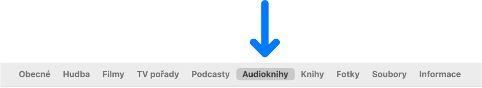 Řádek tlačítek svybraným tlačítkem Audioknihy.