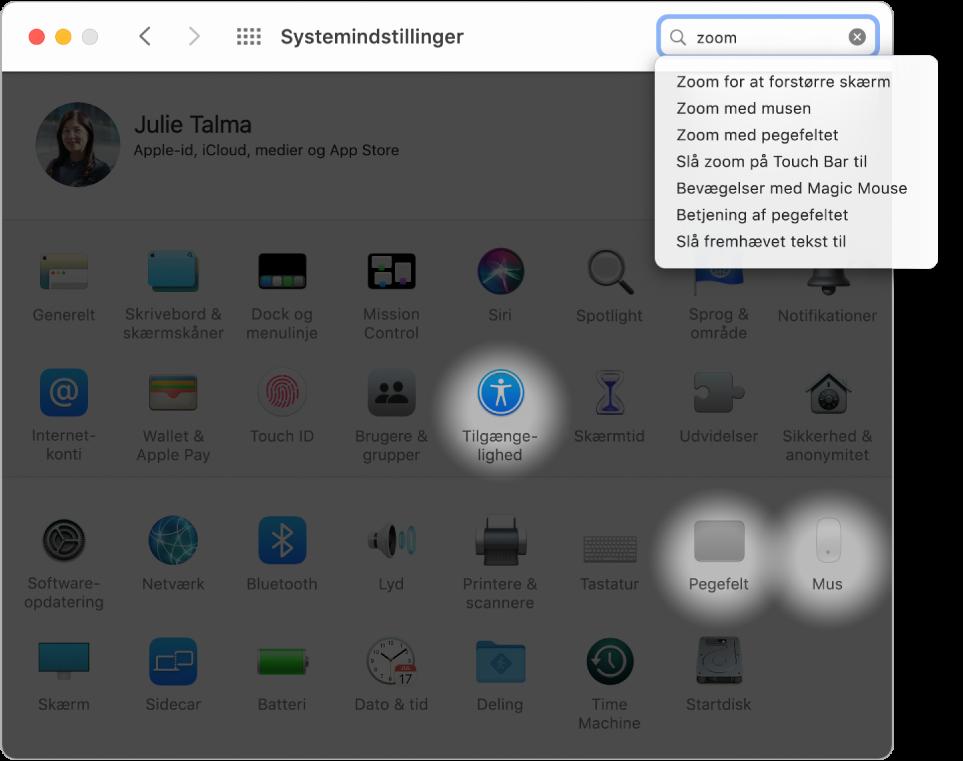 """Vinduet Systemindstillinger med """"zoom"""" i søgefeltet, en liste med søgeresultater under søgefeltet og tre symbolet for indstillinger fremhævet."""