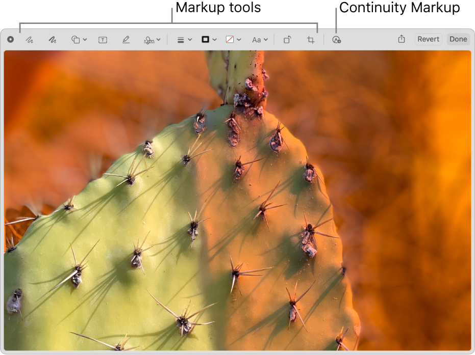 An image in the Markup window showing the toolbar of Markup tools and the tool to click to use Continuity Markup on a nearby iPhone or iPad.