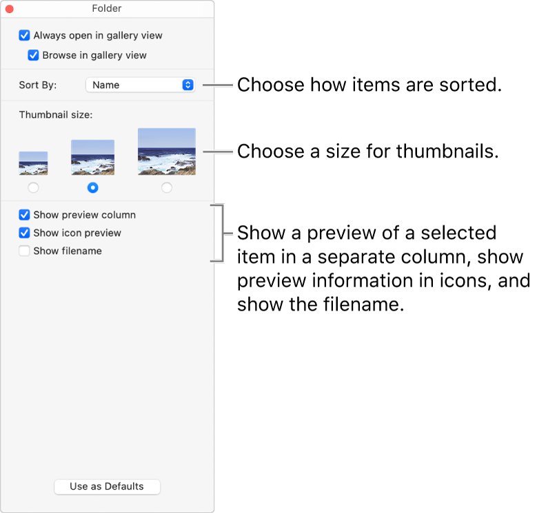 Gallery view options for a folder.