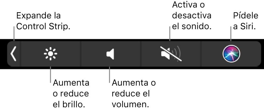 Los botones incluidos en la Control Strip contraída, de izquierda a derecha, para expandir la Control Strip, aumentar o reducir el brillo de la pantalla y el volumen, activar o desactivar el sonido, y pedirle a Siri.