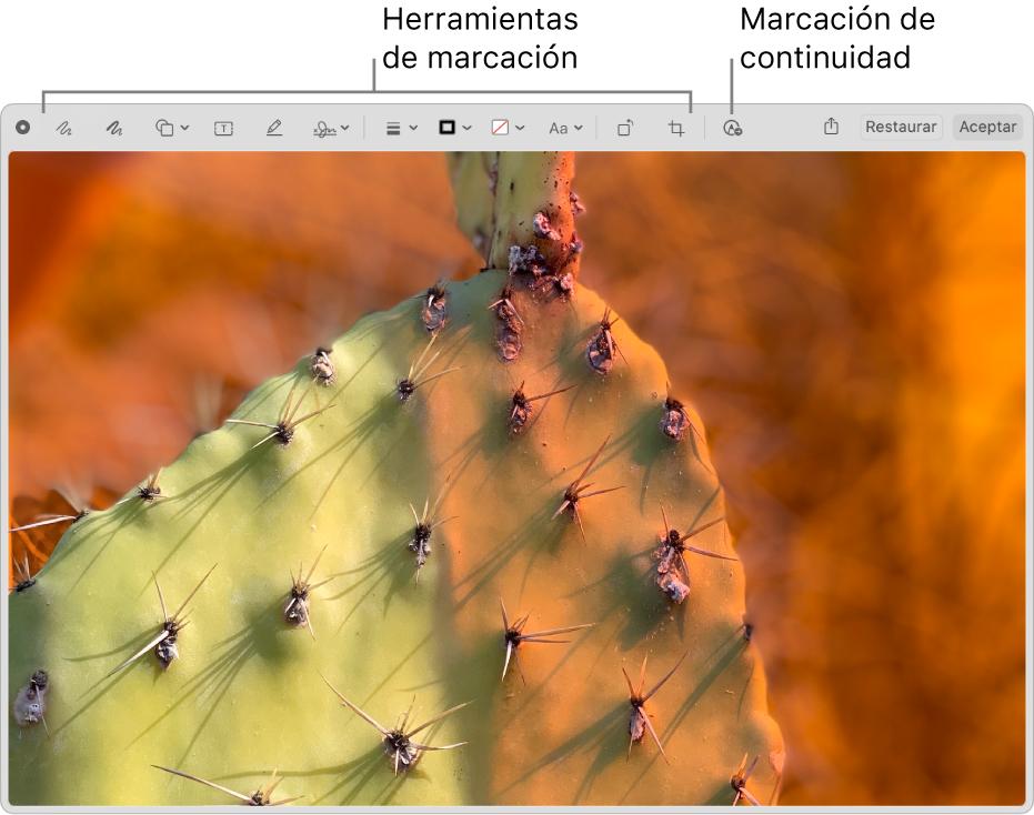 Una imagen en la ventana Marcación que muestra la barra de herramientas de Marcación y la herramienta en la que se debe hacer clic para usar la marcación de continuidad en un iPhone o un iPad cercano.