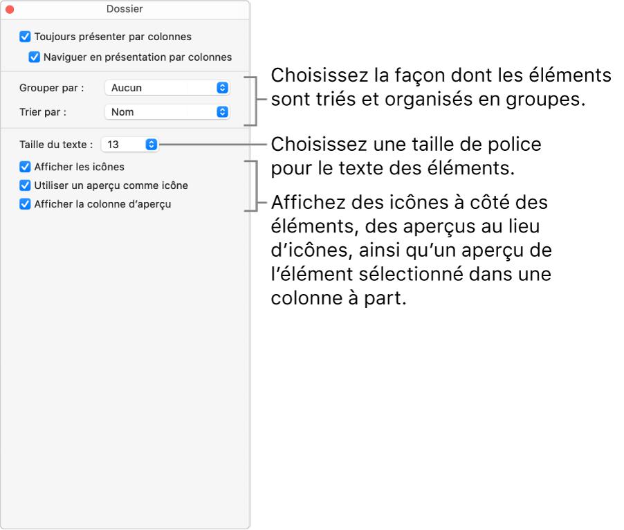 Les options de la présentation par colonnes pour un dossier.