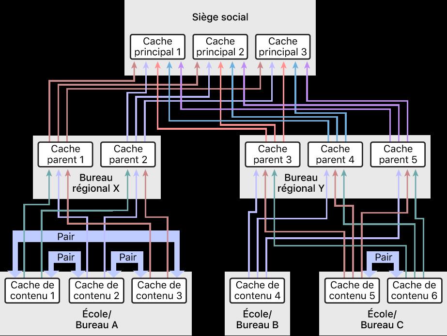 Un réseau avec un grand nombre de caches de contenu, organisé selon une hiérarchie à trois niveaux avec des caches de contenu parents et grands-parents. Seuls les caches de contenu au niveau le plus bas de la hiérarchie ont des pairs définis.