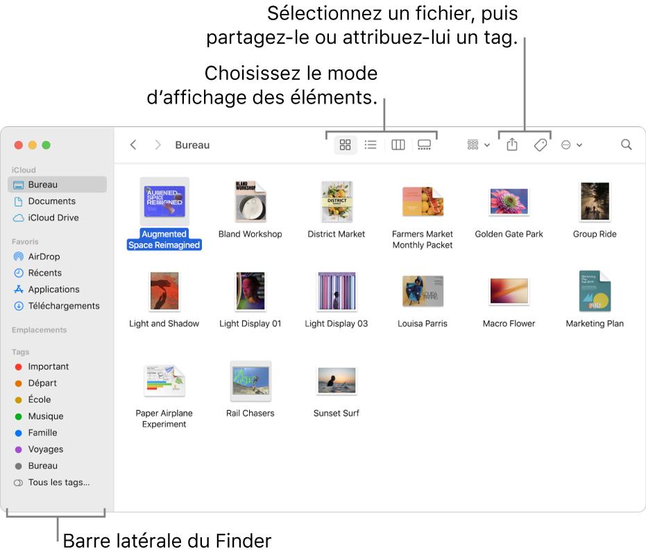 Une fenêtre du Finder avec la barre latérale du Finder sur la gauche. En haut de la fenêtre se trouvent quatre boutons qui modifient la présentation des éléments dans la fenêtre, ainsi que des boutons supplémentaires pour les organiser et les partager.