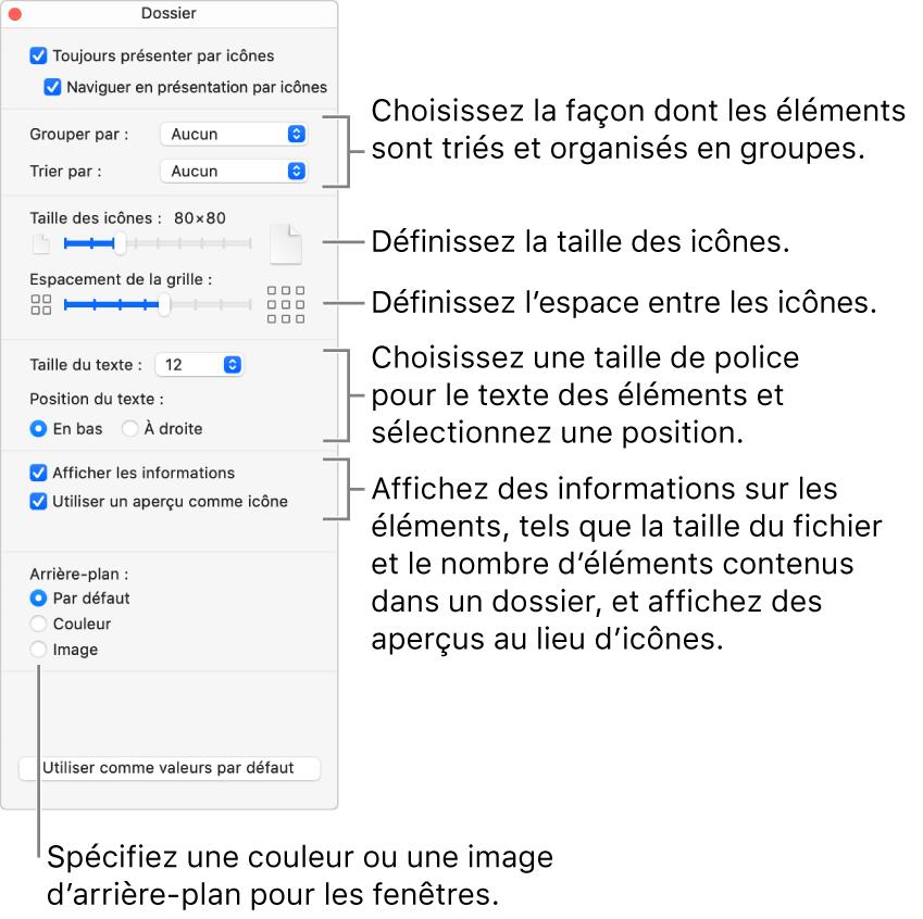 Les options de la présentation par icônes pour un dossier.