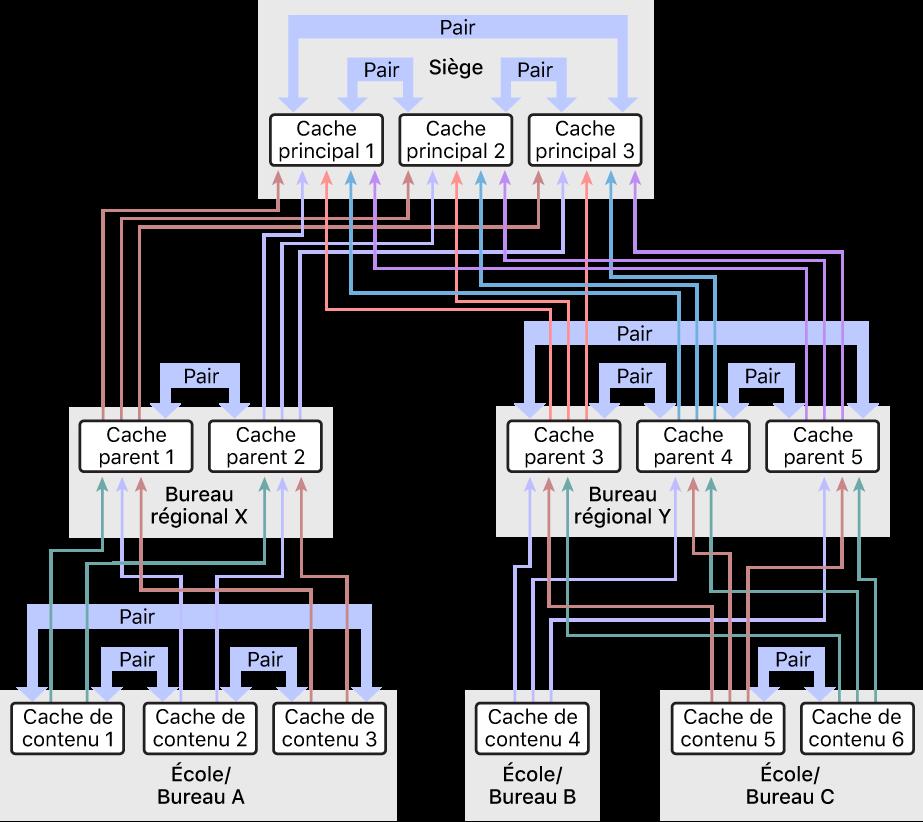 Un réseau avec plusieurs caches de contenu, organisé selon une hiérarchie à trois niveaux avec des caches de contenu parents et grands-parents. Les caches de contenu ont des pairs définis à chaque niveau de la hiérarchie.
