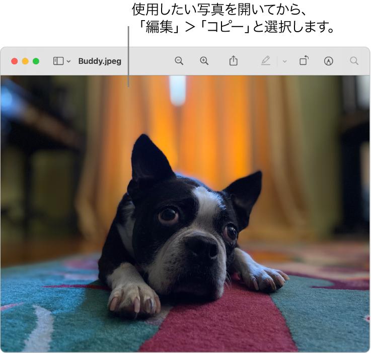 「プレビュー」アプリケーション。コピーするピクチャが表示されています。