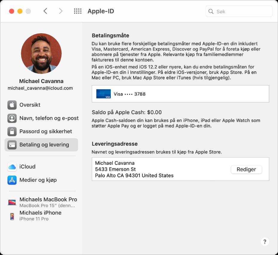 Apple-ID-valg viser et sidepanel med ulike typer kontoalternativer du kan bruke, og Betaling og levering-valgene for en eksisterende konto.