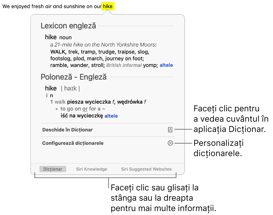 Fereastra de căutare afișând definițiile unui cuvânt din Dicționar și Lexicon.