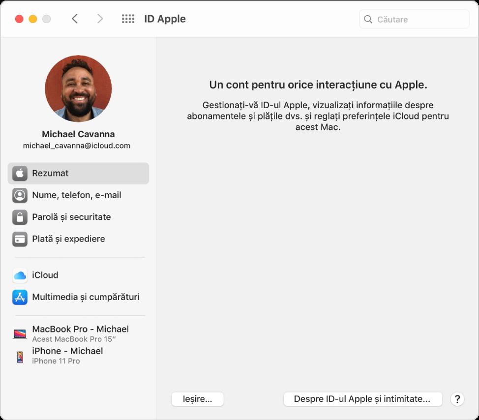Preferințele ID-ului Apple afișând o bară laterală cu diverse tipuri de opțiuni aferente contului pe care le puteți utiliza și preferințele pentru Prezentarea generală aferente unui cont existent.
