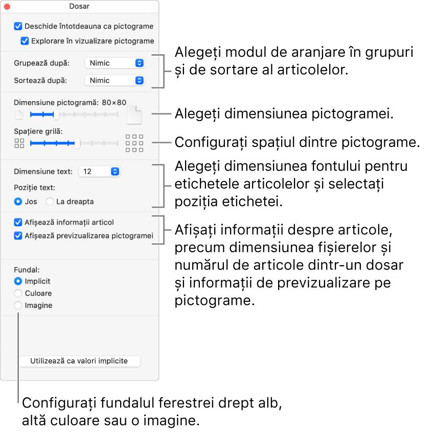Opțiunile de vizualizare Pictogramă pentru un dosar.