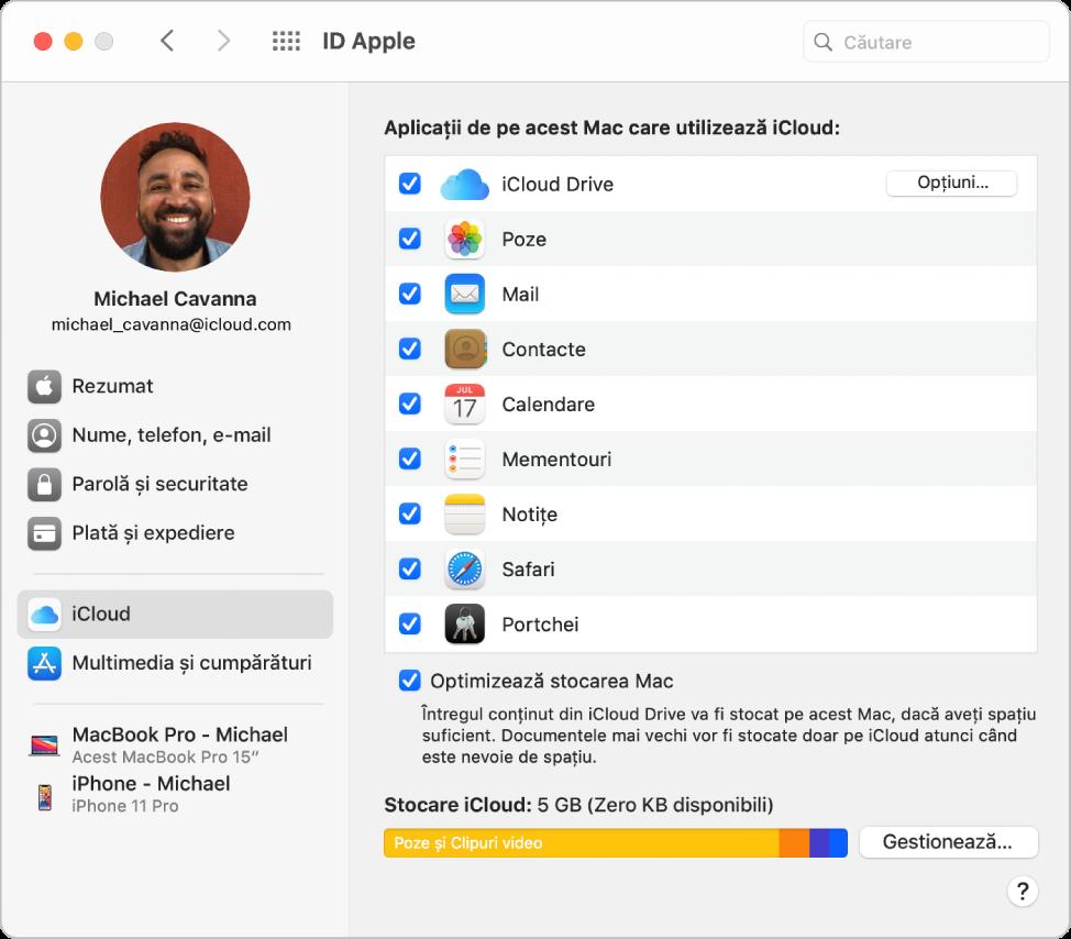 Preferințele ID-ului Apple afișând o bară laterală cu diverse tipuri de opțiuni aferente contului pe care le puteți utiliza și preferințele iCloud aferente unui cont existent.