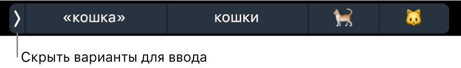 Различные варианты для ввода, в том числе слова и эмодзи, и кнопка слева, позволяющая скрыть их.