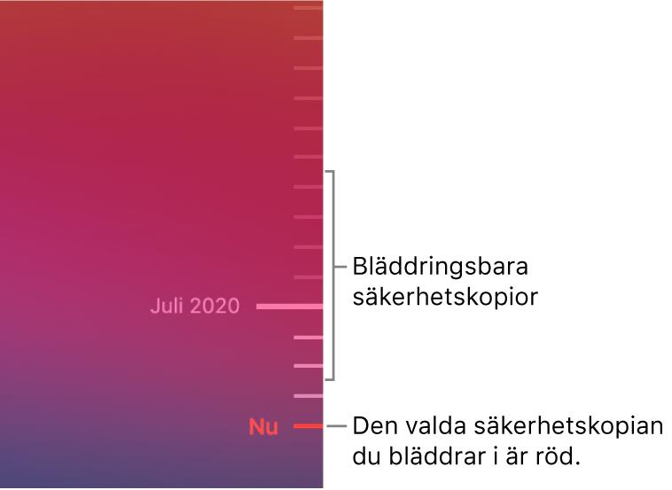 Gradstreck på tidslinjen för säkerhetskopiering. Den röda bockmarkeringen visar vilken säkerhetskopia du bläddrar i.