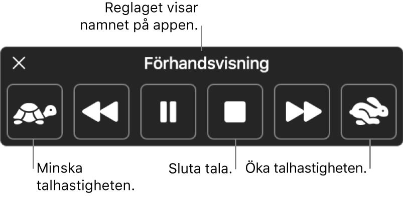 Kontrollpanelen som kan visas när datorn läser upp markerad text. Kontrollpanelen har sex knappar som, från vänster till höger, gör det möjligt att sänka uppläsningshastigheten, hoppa tillbaka en mening, spela upp eller pausa uppläsningen, stänga av uppläsningen, hoppa fram en mening och öka uppläsningshastigheten. Namnet på appen visas högst upp på kontrollpanelen.