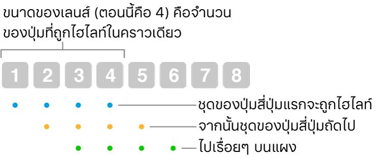 ภาพประกอบของวิธีการทำงานของลื่นและขั้น:  ชุดปุ่มสี่ปุ่ม (ขนาดเลนส์) จะได้รับการไฮไลท์ จากนั้นจึงเป็นชุดปุ่มสี่ปุ่มถัดไป และเป็นเช่นนี้เรื่อยไปตามลำดับการซ้อนทับ