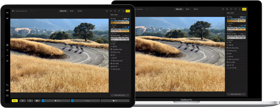 iPad Pro bên cạnh MacBook Pro. Màn hình nền máy Mac đang hiển thị một ảnh đang được chỉnh sửa trong ứng dụng Ảnh. iPad Pro hiển thị ảnh tương tự cũng như thanh bên Sidecar ở mép bên trái của màn hình và Touch Bar trên máy Mac ở cuối màn hình.