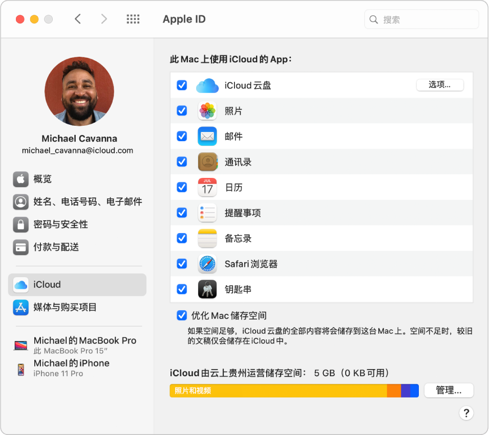 Apple ID 偏好设置的边栏显示您可以使用的不同类型的帐户选项以及现有帐户的 iCloud 偏好设置。