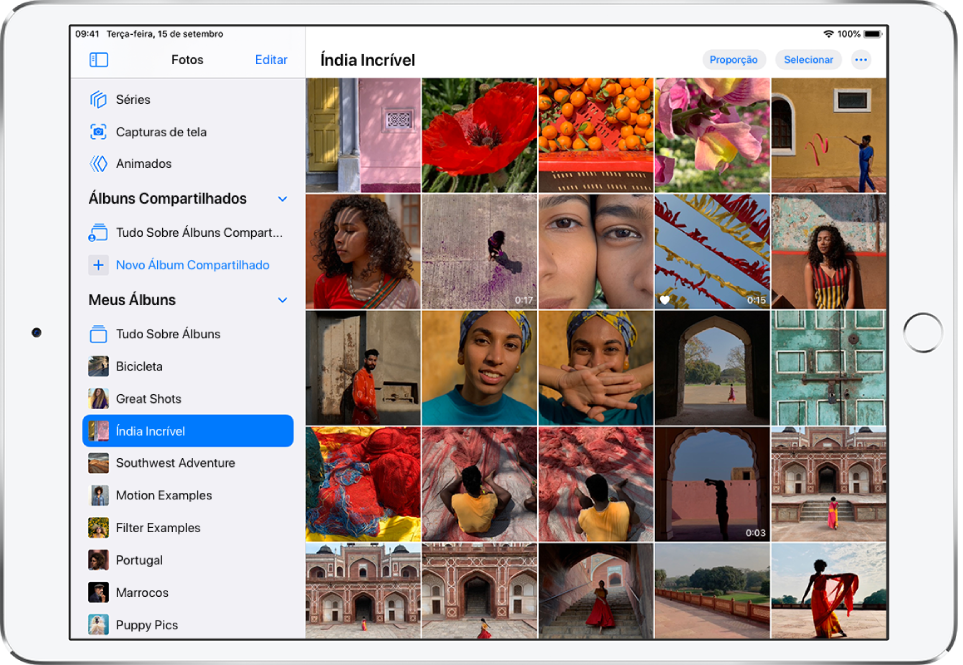 A barra lateral do app Fotos está aberta no lado esquerdo da tela. Abaixo do título Meus Álbuns, um álbum chamado Índia Incrível está selecionado. O resto da tela do iPad contém fotos e vídeos do álbum Índia Incrível aparecendo em quadrados.