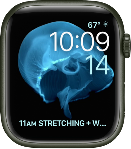 The Motion watch face showing a jellyfish. You can choose which object is in motion and add several complications. A Weather Conditions complication is at the top right, the time and date are below, and a Calendar Schedule complication is at the bottom.