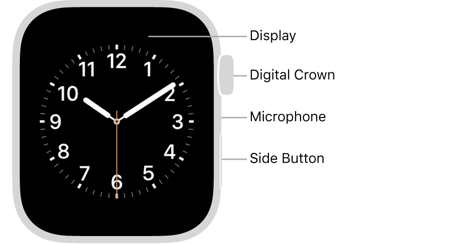 The front of AppleWatch Series6, with the display showing the watch face, and the Digital Crown, microphone, and side button from top to bottom on the side of the watch.