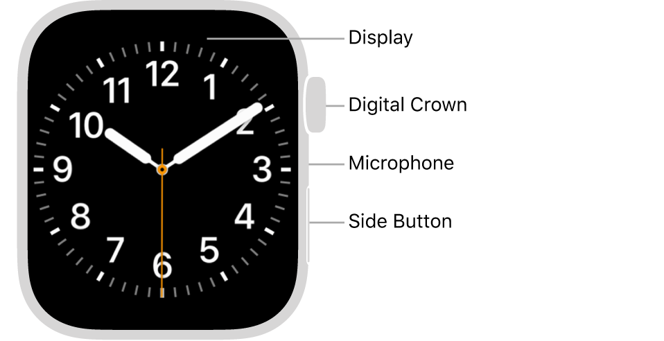 The front of AppleWatch Series7, with the display showing the watch face, and the Digital Crown, microphone, and side button from top to bottom on the side of the watch.