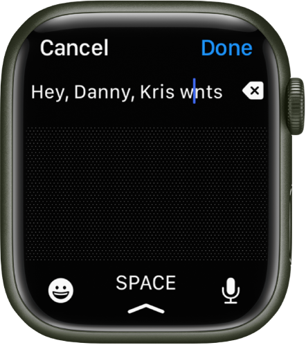 A text entry screen with a cursor between two letters in a misspelled word. The Delete button is to the right of the text. Emoji, Space, and Dictate buttons are at the bottom.