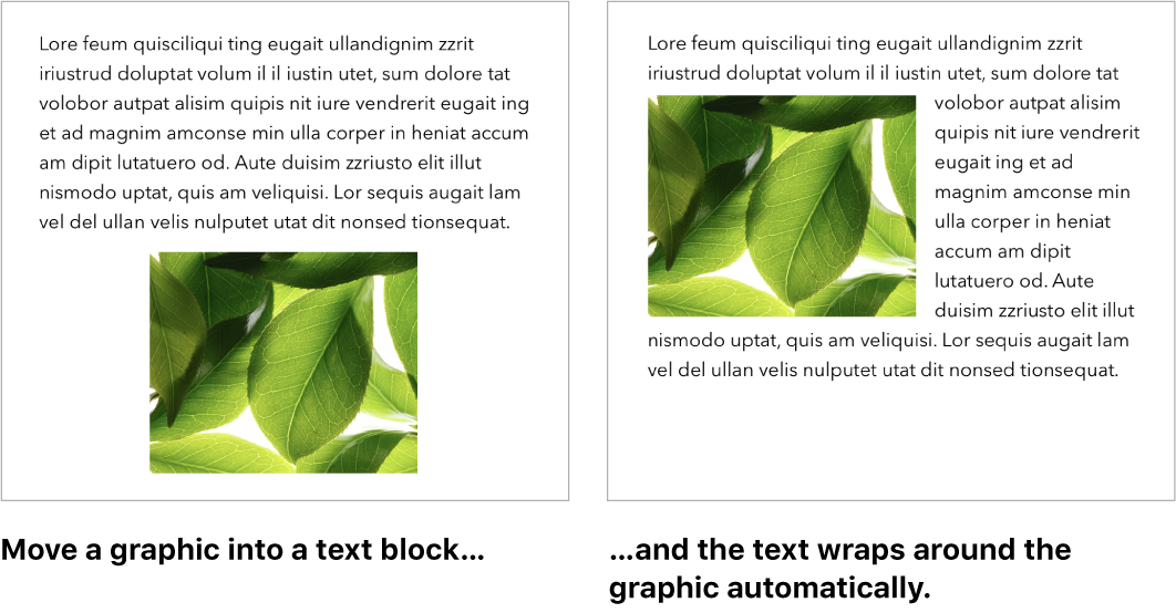 A Pages window showing how text wraps around graphics.