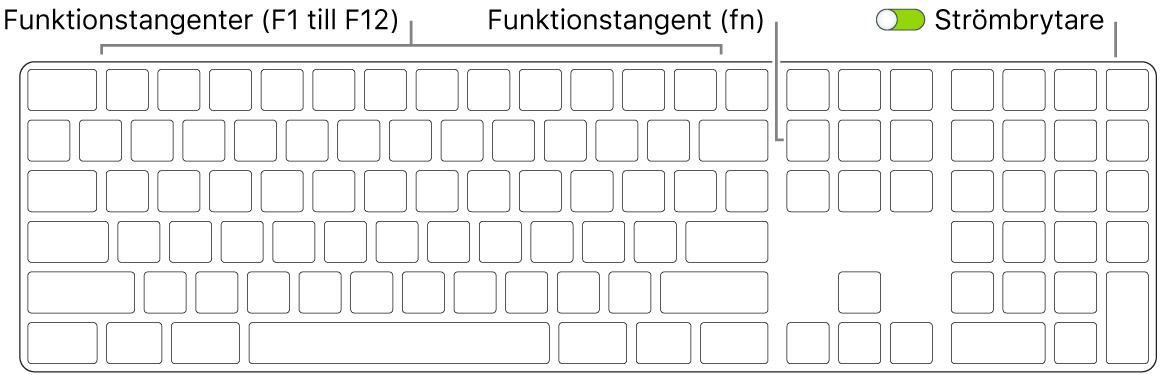 MagicKeyboard med funktionstangenten (fn) i det nedre vänstra hörnet och strömbrytaren i det övre högra hörnet av tangentbordet.