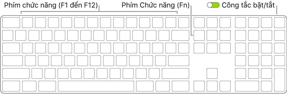 MagicKeyboard đang hiển thị phím Function (Fn) ở góc dưới cùng bên trái và công tắc bật/tắt ở góc phía trên bên phải của bàn phím.