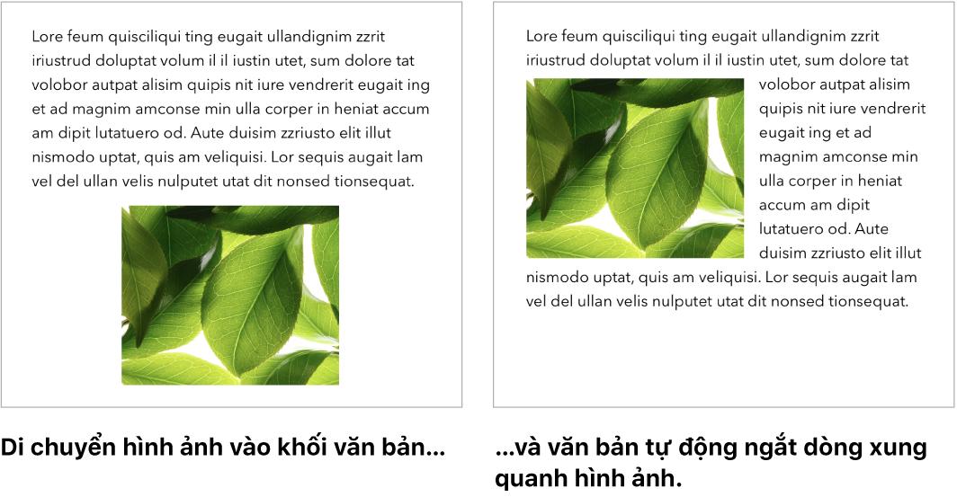 Một cửa sổ Pages đang minh họa cách văn bản ngắt dòng xung quanh hình ảnh.