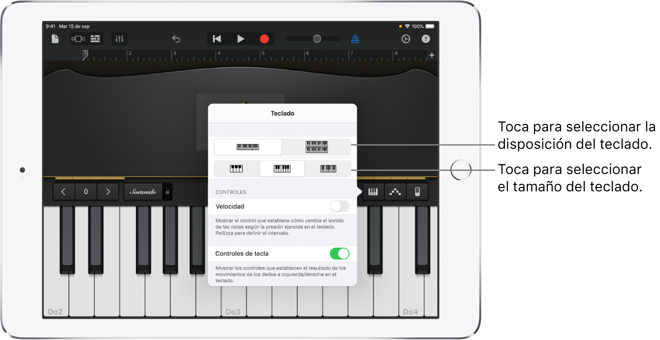 Controles de disposición y tamaño del teclado