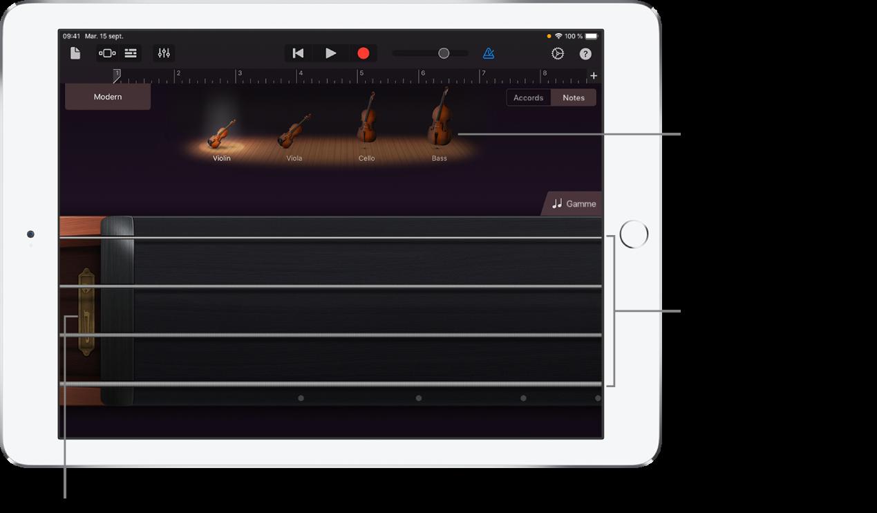 La vue Notes sur l'instrument tactile à cordes
