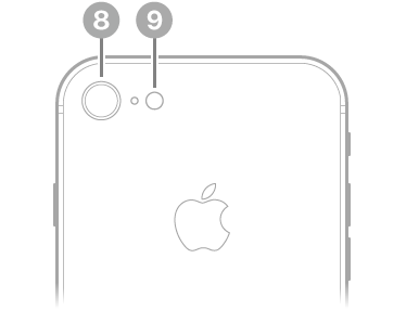 The back view of iPhone 8.