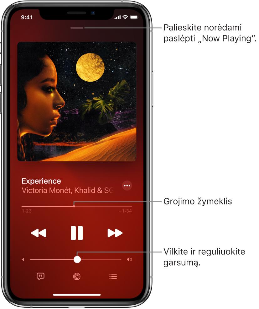 """Ekranas """"Now Playing"""", kuriame rodomas albumo viršelis. Žemiau rodomas dainos pavadinimas, atlikėjo vardas, papildomų parinkčių mygtukas, leidžiamo įrašo vietos žymiklis, atkūrimo valdikliai, garsumo slankiklis, dainos žodžių mygtukas, atkūrimo paskirties vietos mygtukas ir eilės mygtukas. Mygtukas """"Hide Now Playing"""" yra viršuje."""