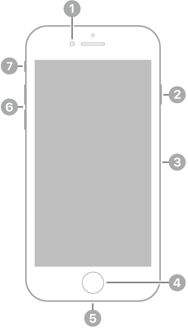 มุมมองด้านหน้าของ iPhone SE (รุ่นที่ 2)