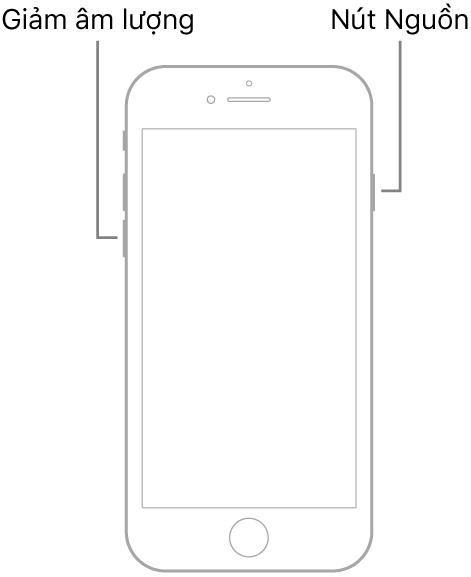 Hình minh họa của iPhone 7 có màn hình hướng lên trên. Nút giảm âm lượng được hiển thị ở cạnh trái của thiết bị và nút Nguồn được hiển thị ở bên phải.