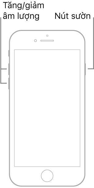 Một hình minh họa về một kiểu máy iPhone được đặt nằm ngửa có nút Home. Các nút tăng và giảm âm lượng được hiển thị ở cạnh bên trái của thiết bị và nút sườn được hiển thị ở cạnh bên phải.