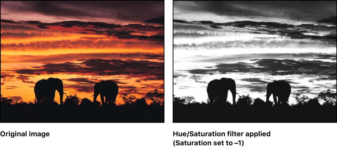 Canvas showing effect of HSV Adjust filter