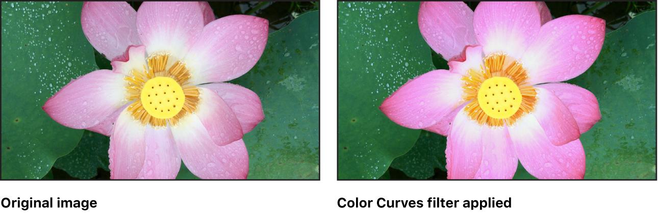 """Lienzo con efecto del filtro """"Curvas de color"""""""