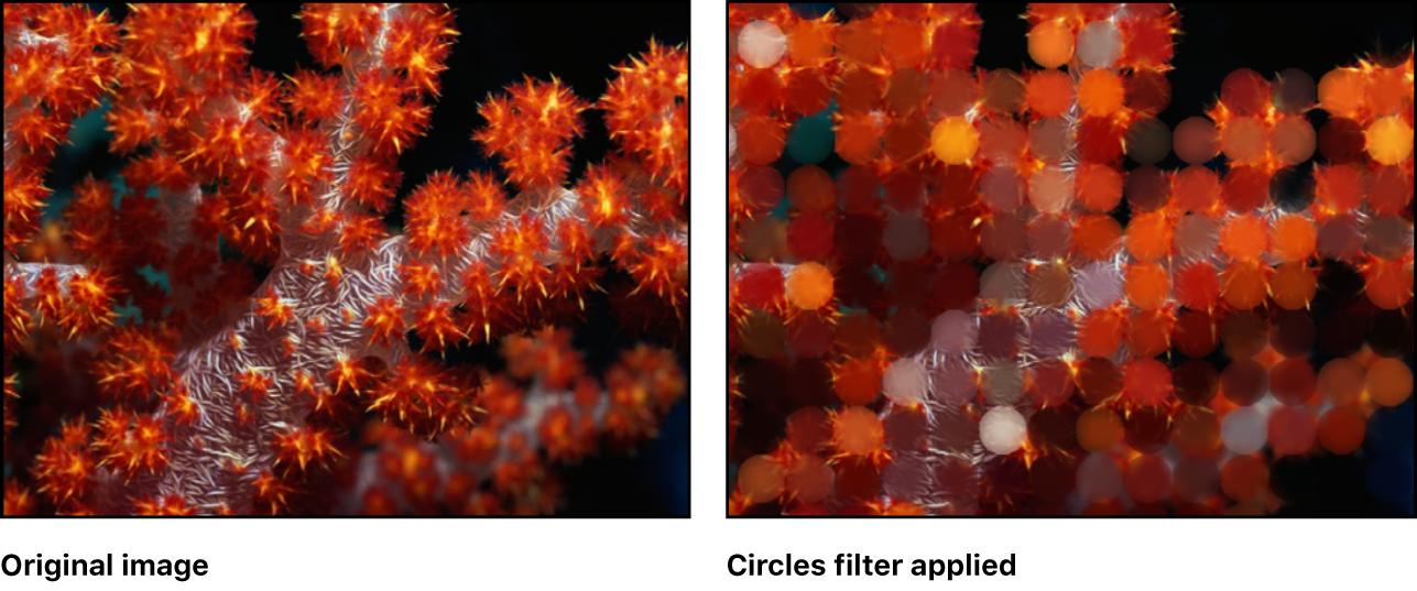 Lienzo con efecto del filtro Círculos