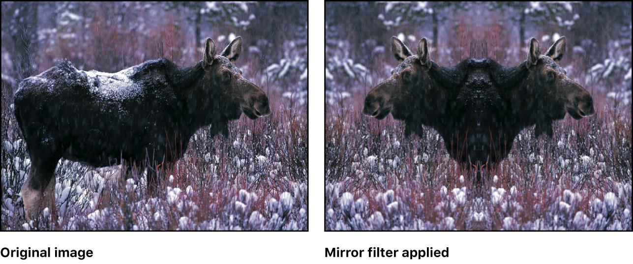 Lienzo con efecto del filtro Espejo